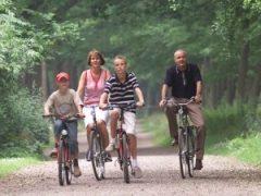 Mooie fietsroutes vanuit Resort Arcen